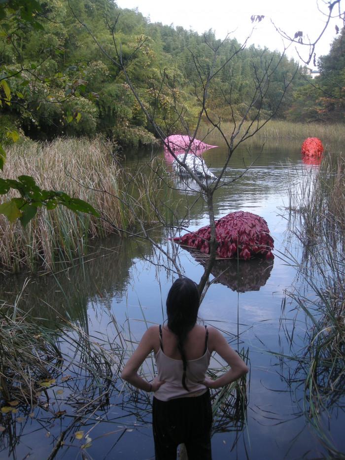 Japan – Abiko International Open Air Exhibition – Fusa – 2009